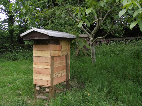 Natural Beekeeping Forum - low cost, low impact, balanced ...